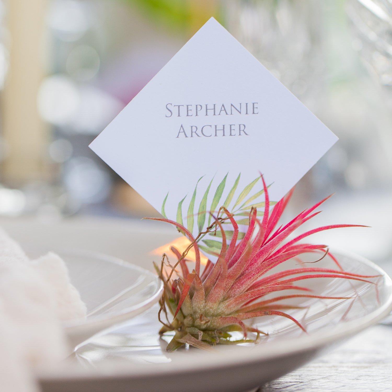 Botanical Wedding, Palm Print Wedding, Palm Print Stationery, Palm Print Wedding Stationery