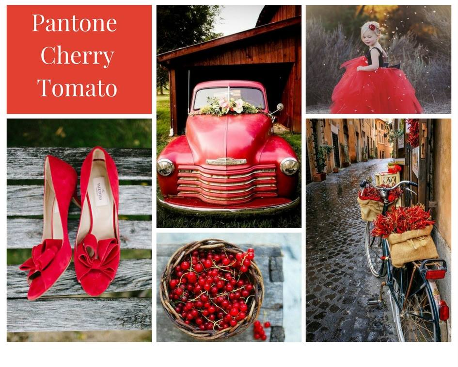 bright red, cherry red, bold colour theme, modern colour theme, natural colour theme, wedding colour inspiration, wedding colours, wedding colour theme