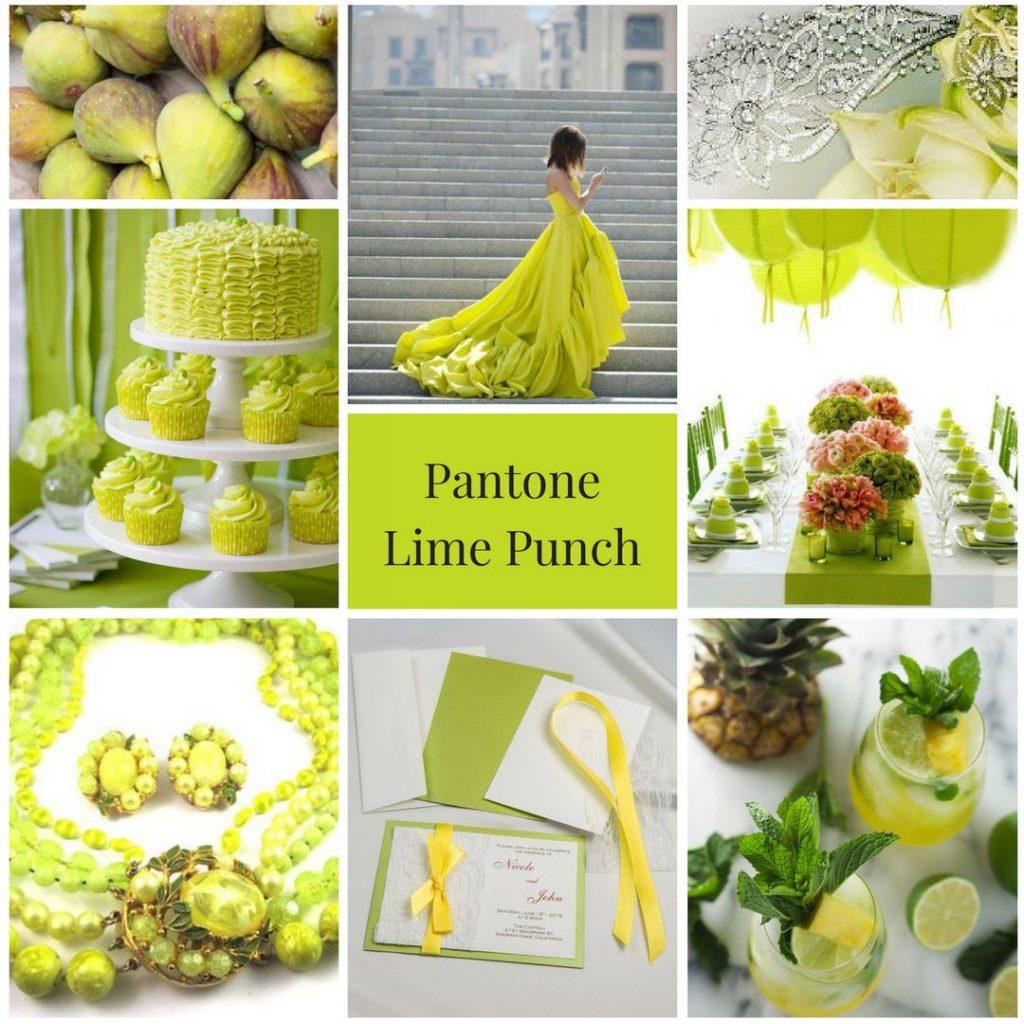 lime green, vibrant colour theme, modern colour theme, natural colour theme, wedding colour inspiration, wedding colours, wedding colour theme