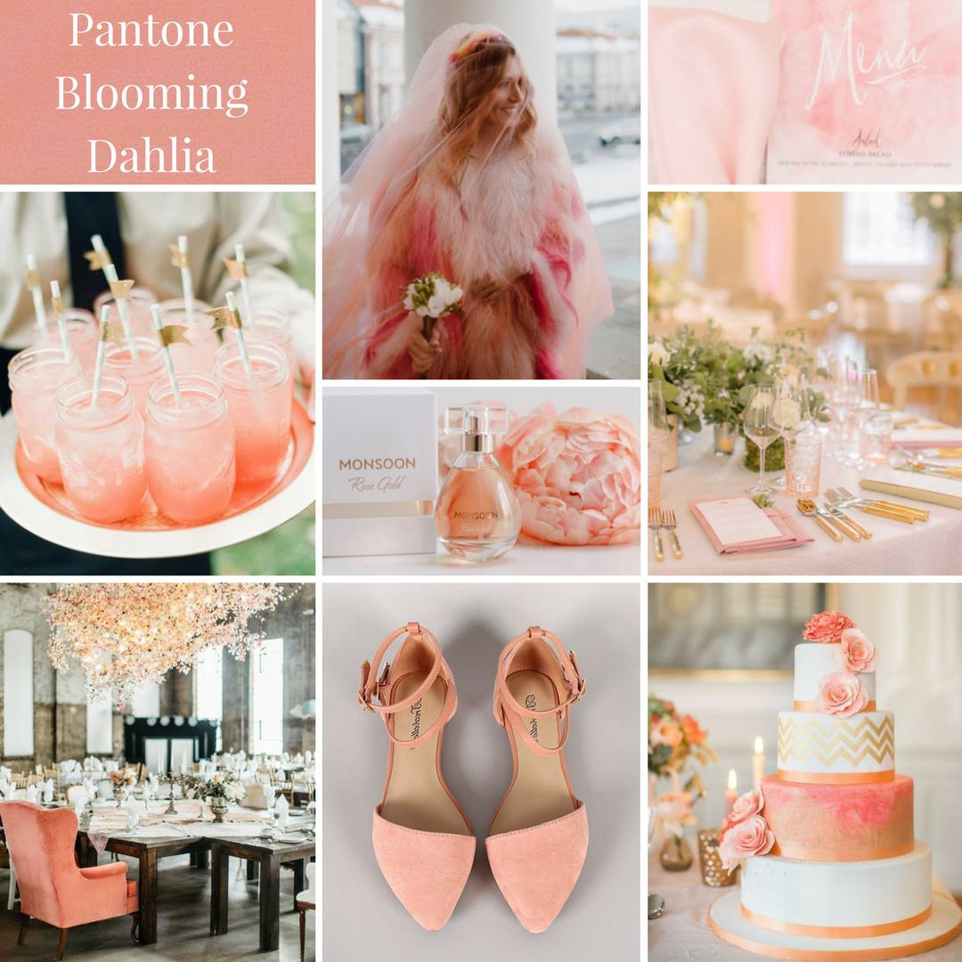 luxe pink, modern colour theme, natural colour theme, dahlia pink, wedding colour inspiration, wedding colours, wedding colour theme