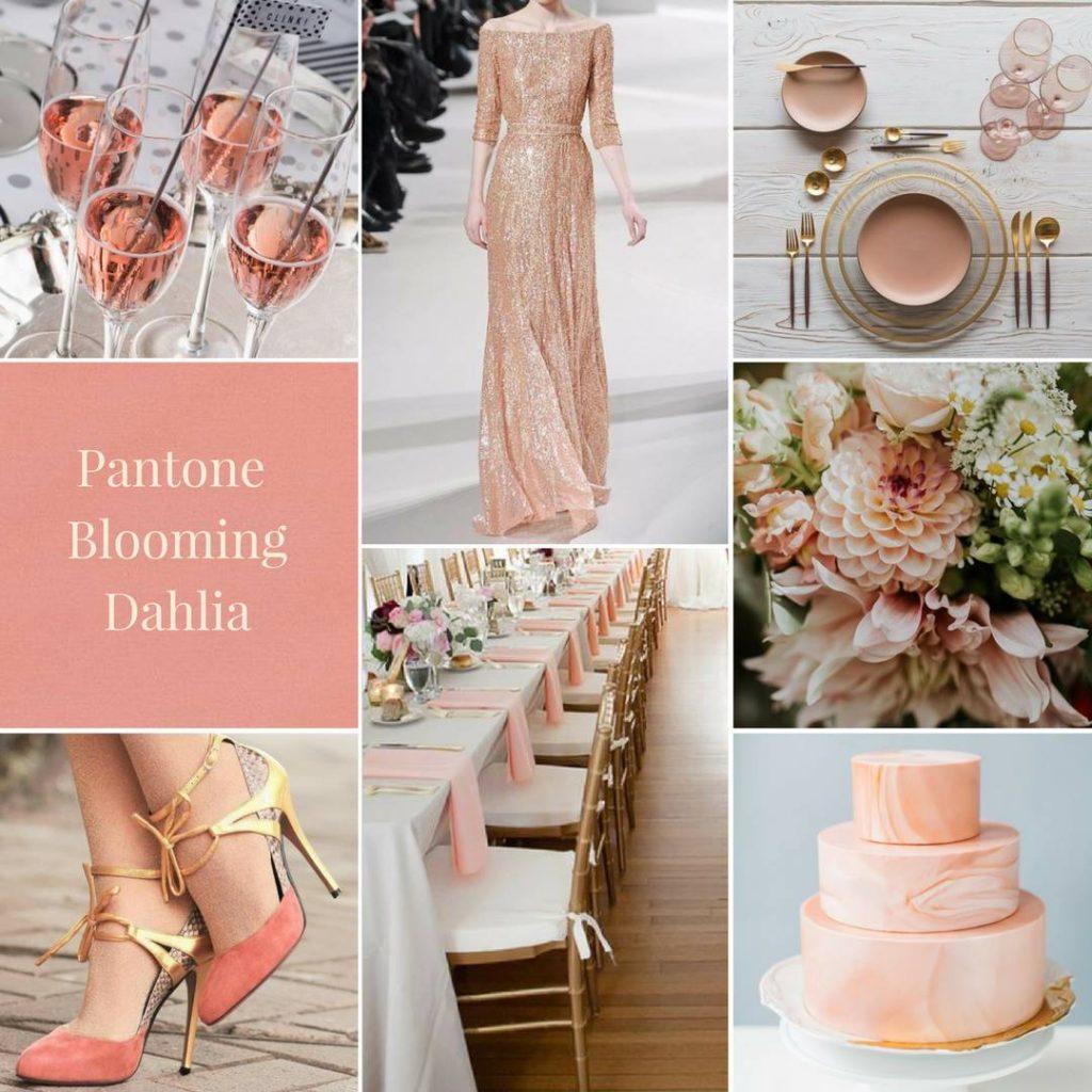 luxe pink, modern colour theme, natural colour theme, dahlia pink, wedding colour inspiration, wedding colours, wedding colour theme