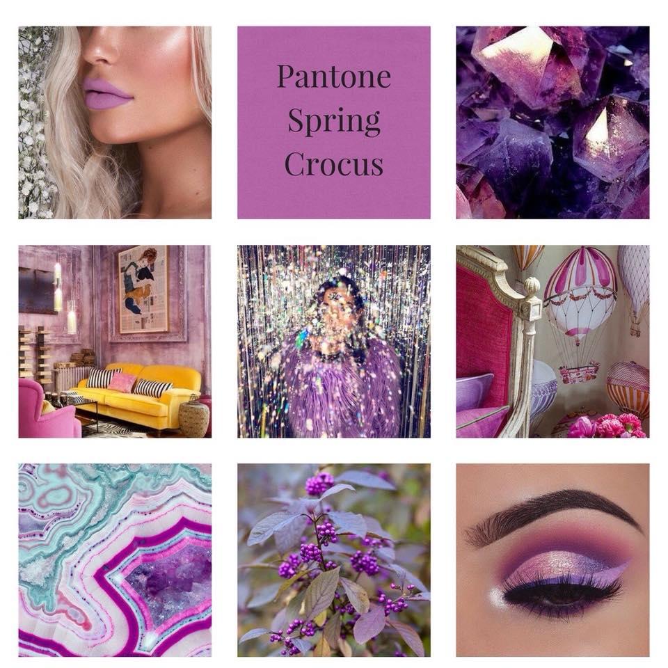 purple, vibrant colour theme, modern colour theme, natural colour theme, wedding colour inspiration, wedding colours, wedding colour theme