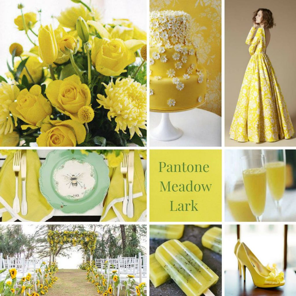 yellow, spring colours, summery colour theme, modern colour theme, natural colour theme, wedding colour inspiration, wedding colours, wedding colour theme