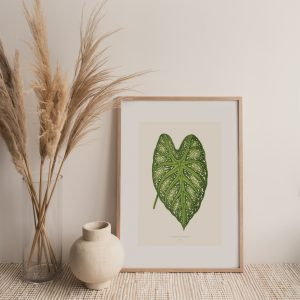 Botanical Fine Art Print