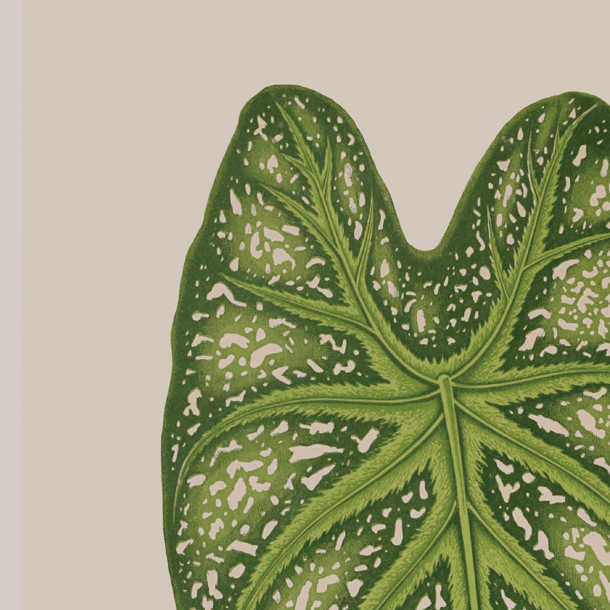 Tropical Leaf Fine Art Print | Flamboyant Invites